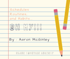 Schedules, Routines, and Habits…OH MY!